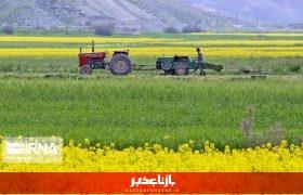 دولت به مکانیزه کردن کشاورزی و کاهش هزینه تولید در قم کمک میکند