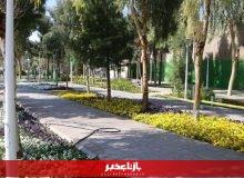 توسعه ۲۵۰هزار متر مربع فضای سبز در پردیسان