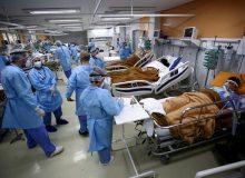 درخواست مقامات برزیلی از زنان برای به تاخیر انداختن بارداری