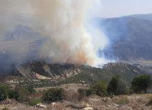 آخرین جزئیات آتشسوزی در ارتفاعات کردکوی