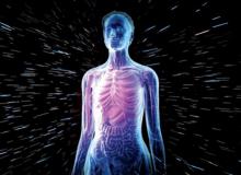 از تاریخچه بدن انسان چه میدانید؟!