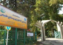 ماجراجویی شبانه افراد خودسر مقابل پردیس کشاورزی دانشگاه تهران!