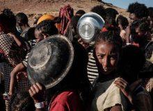 نماینده اتحادیه اروپا: مقامات اتیوپی به دنبال نابودی کامل قوم تیگرای