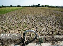 """در مدیریت منابع آب،""""مدیریت"""" جایگزین """"ریاست""""شود/استفاده از افراد کارآمد محیط زیستی در دولت آینده"""