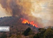 نیروهای نظامی به منطقه آتشسوزی جنگلهای کردکوی اعزام شدند