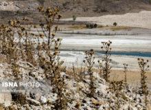 خشکسالی ۲۵ هزار هکتار از زمینهای کشاورزی رزن را غیر قابل برداشت کرد